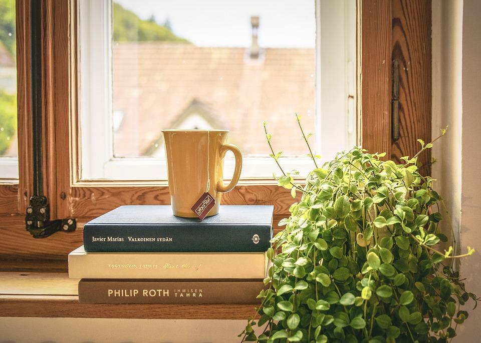 Gomila knjiga na prozorskom oknu.